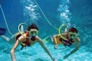 Read more about the article What You Need to Know About Snorkeling in Stuart, Fl